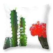 Cactus Plants Throw Pillow