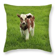 Calf In A Pasture Throw Pillow