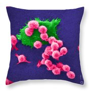 Cancer Cell Death, Sem 2 Of 6 Throw Pillow