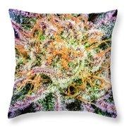 Cannabis Varieties Throw Pillow