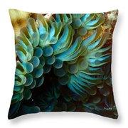 Carpet Anemones Throw Pillow