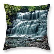 Cascadilla Gorge Falls Throw Pillow