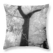 Castalia Throw Pillow