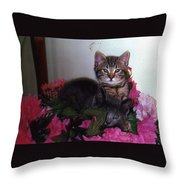 2 Cats In The Flowers Throw Pillow