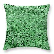 Celery Stalk, Sem Throw Pillow
