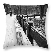 Central Park 8 Throw Pillow