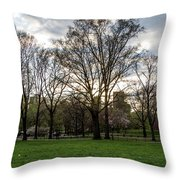 Central Park Views  Throw Pillow