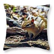 Chipmunk At Heckrodt Throw Pillow