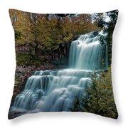 Chittanengo Falls Throw Pillow