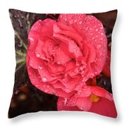 Close-up Of Pink Flowers In Bloom Throw Pillow