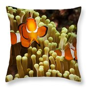 Clown Anemonefish Throw Pillow