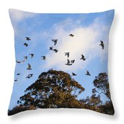 Cockatoos - Canberra - Australia Throw Pillow