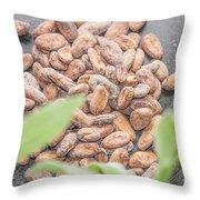 Cocoa Beans Throw Pillow