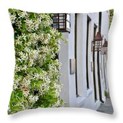 Colonial Home Exterior With Vertical Plants And Old Lanterns Displayed On The Side Of Home Throw Pillow