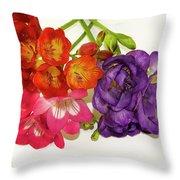 Colorful Freesia Throw Pillow