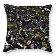 Colorful Lichens Growing On Rocks Along Monument Ridge, In The Eastern Sierra Nevadas Throw Pillow