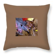 Colors Of The Fall Throw Pillow