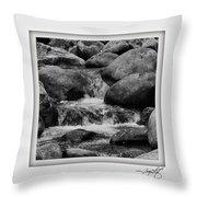 Columbia Gorge 2 Throw Pillow