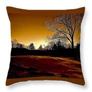 Copper Sunset Throw Pillow