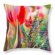 2 Corinthians 3 6 Throw Pillow