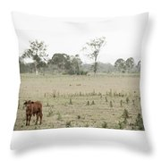 Country Cow Throw Pillow