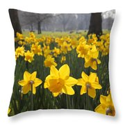Daffodils In St James Park London Throw Pillow