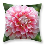 Dahlia Named Hawaii Throw Pillow