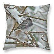 Dark-eyed Junco - Snowbird Throw Pillow