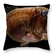 Deep Sea Fangtooth Throw Pillow