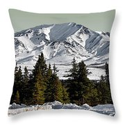 Denali Park - Alaska Throw Pillow