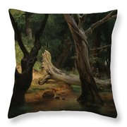 Departure For The Hunt In The Pontine Marshes Throw Pillow