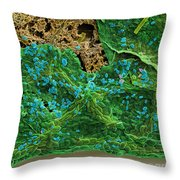 Diatoms Eating A Maple Leaf Throw Pillow