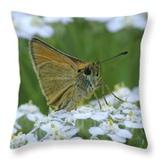 Dion Skipper Yarrow Blossoms Throw Pillow