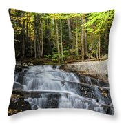 Discovery Falls Throw Pillow