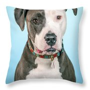 Cara Throw Pillow
