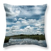 Dutch Skies Throw Pillow