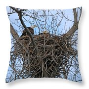 2 Eagles On Nest  3172b  Throw Pillow