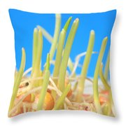 Early Corn Development, Zea Mays Throw Pillow