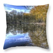 Early Morning Forest Pond Throw Pillow