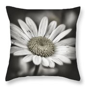 Evening Shade Throw Pillow