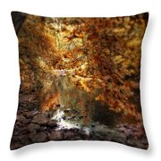 Fall Reflected Throw Pillow