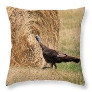 Female Eastern Wild Turkey Throw Pillow