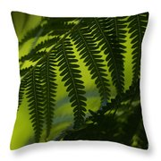 Fern Abstract Throw Pillow