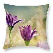 Flower On Summer Meadow Throw Pillow
