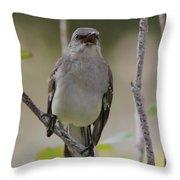 Fly Catcher Throw Pillow