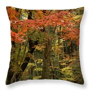 Forest In Autumn Throw Pillow