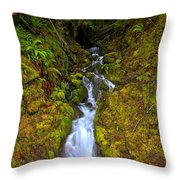 Streaming In The Olympic Rainforest Throw Pillow