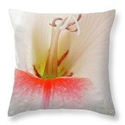 Gladiolus Throw Pillow