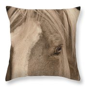Golden Palomino Throw Pillow