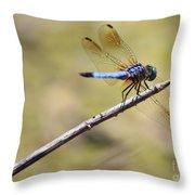 Golden Wings Throw Pillow